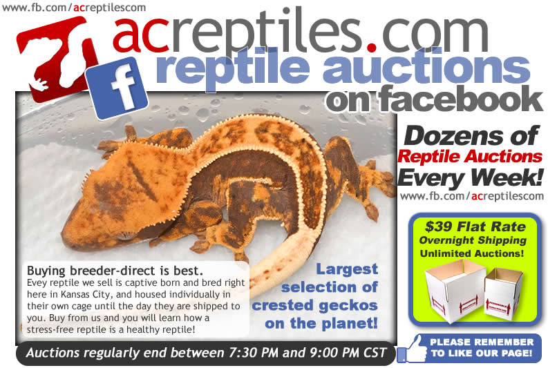 Check out our Facebook Auctions!