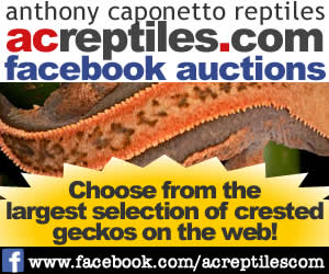 FB-Auctions-Static-Cbanner